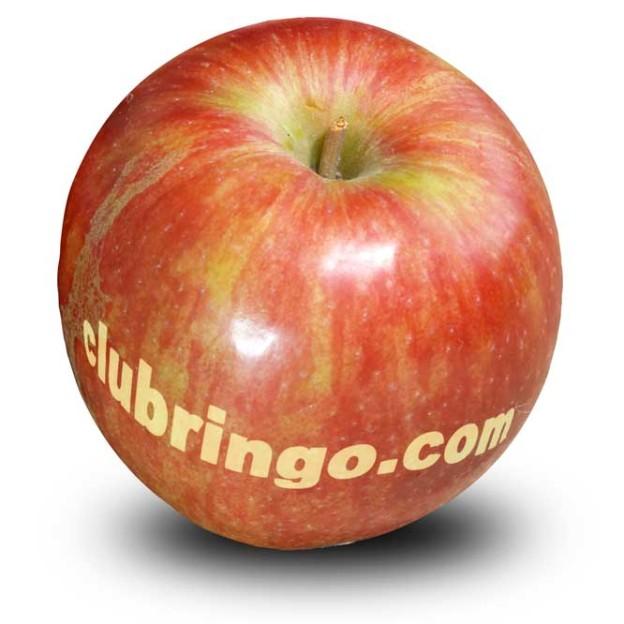 clubringo.com